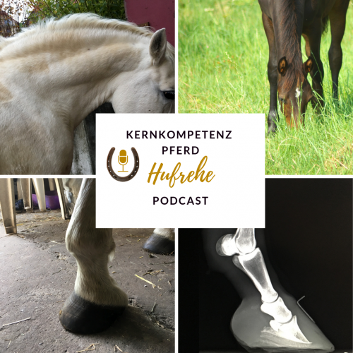 podcast-hufrehe