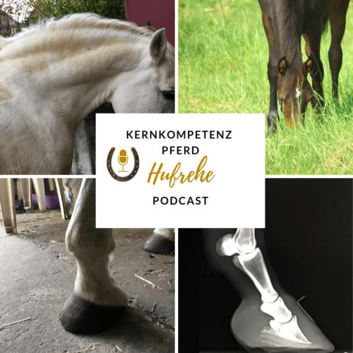 podcast-hufrehe