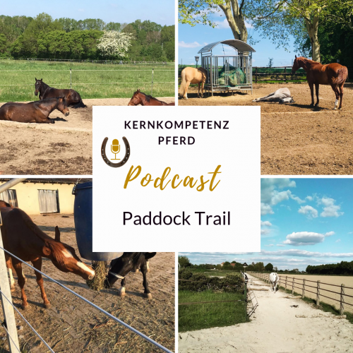 podcast-paddock-trail